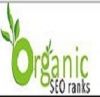 Organic SEO Ranks