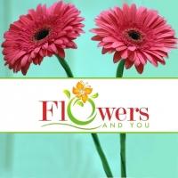 flowersandyou