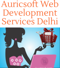Auricsoft Delhi - Ecommerce Web Development