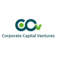 CCVIndia – Corporate Capital Ventures Pvt. Ltd.