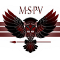Minerva Special Purpose Vehicles Pvt.Ltd