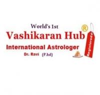Vashikaran Specialist Hub