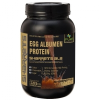 Egg Albumen Protein Powder
