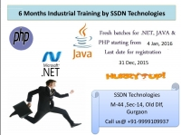Best 6 months Industrial Training