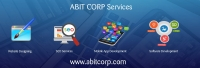 Website Designing and Development services