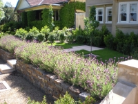Residential Landscaping & Design