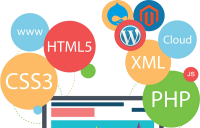 Web Design & Development Company In India