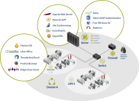 Networking and Security Assessments