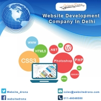 Website Development in Delhi