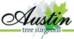 Austin Tree Surgeons