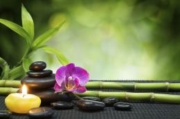 Pearl spa Body massage