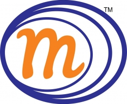 MS Techno Solutions™