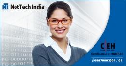 Nettechindia