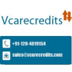 Vcare Credits - Tally Solutions Provider India