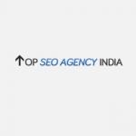 TOP SEO Agency India