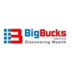 Big Bucks india pvt ltd