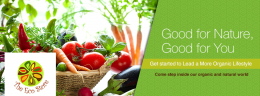 Online grocery bangalore
