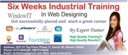 Web Design Training in Chandigarh - Windowit