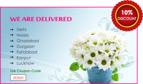 Free Cake & Flowers Delivery in Noida