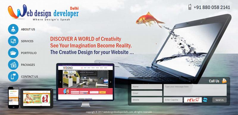 Web Design Developer Delhi