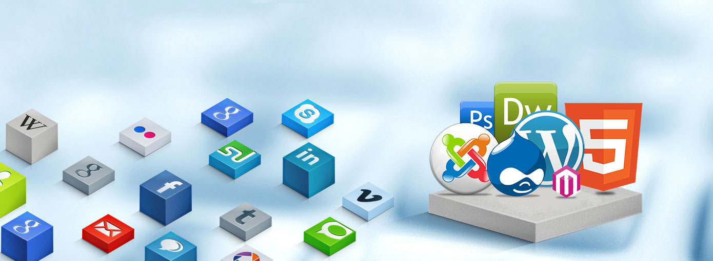 Xpecto™ IT Solutions – Website Development Company India