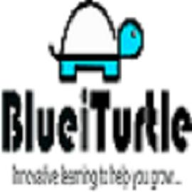 Blueiturtle