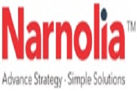 Narnolia Securities Limited