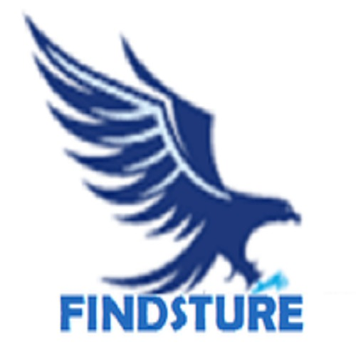 findsture -  SEO Company