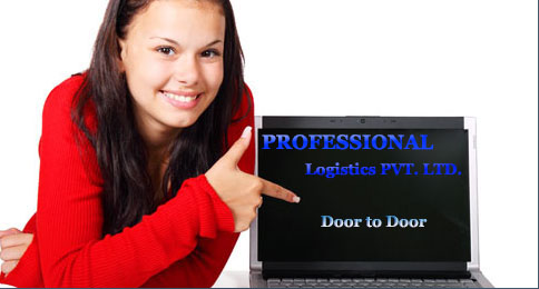 Professional Logistics Pvt. Ltd. india