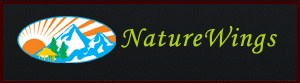 naturewings