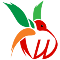 Wings Technologies - Web Design Company