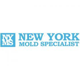 New York Mold Specialist