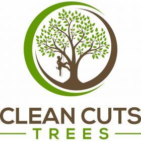 Clean Cuts Trees