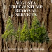 Augusta Tree & Stump Removal Services