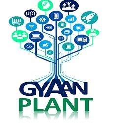 Gyaan Plant