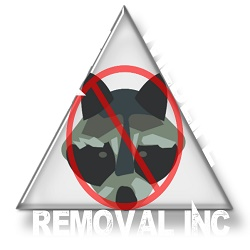 Triangle Wildlife Removal & Pest Control, Inc.