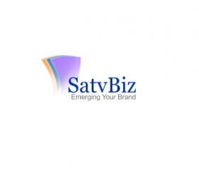 Satvbiz - Digital Marketing Agency