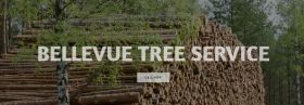 Bellevue Tree Trimming