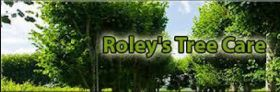 Roley's Tree Care Service - Riverside Consulting Arborist