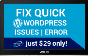 Fix WordPress Issues Only $29