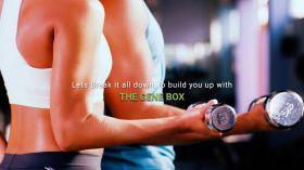 The Gene Box