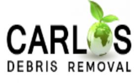Debris Removal Hollywood FL - Carlos