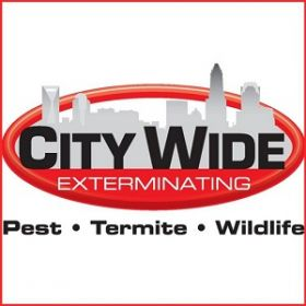 City Wide Exterminating