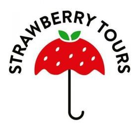 Strawberry Tours - Free Walking Tours Buenos Aires