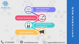 BluRover Software Technology Services