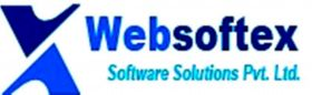 Websoftex Software Solutions Pvt Ltd