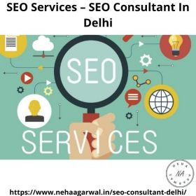 SEO Services and SEO Consultation in Delhi