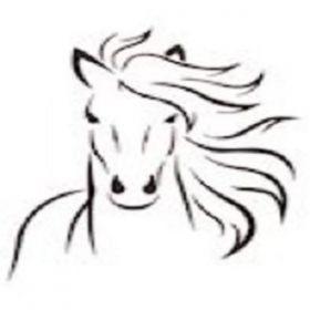 Kuddebeest Coaching