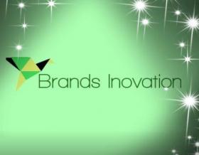 Brands Inovation- Web Development Company Delhi