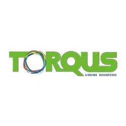 Torqus Systems Pvt. Ltd.